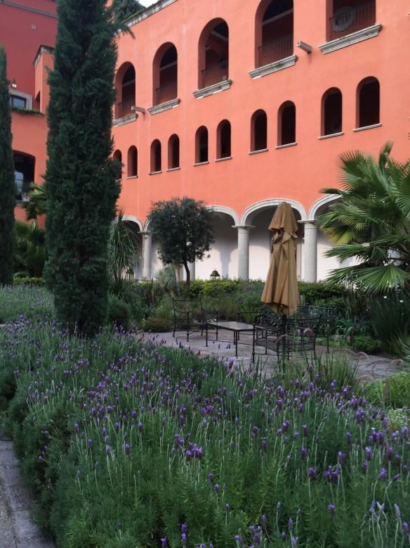 San Miguel de Allende The Potted Boxwood 36