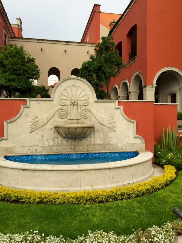 San Miguel de Allende The Potted Boxwood 39
