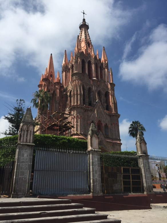 San Miguel de Allende The Potted Boxwood 49