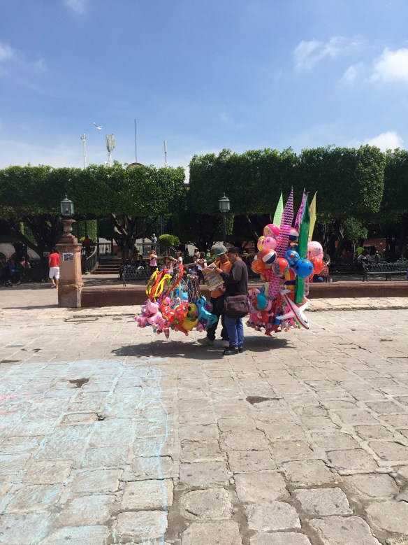 San Miguel de Allende The Potted Boxwood 51