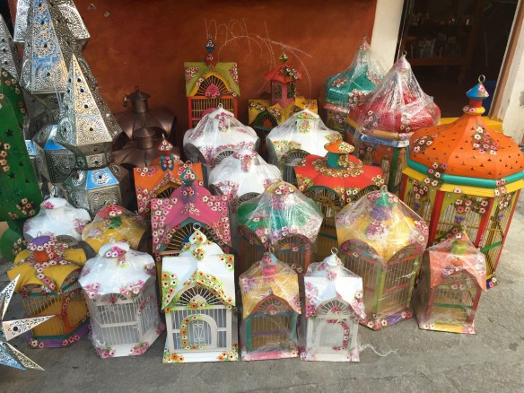 San Miguel de Allende The Potted Boxwood 6
