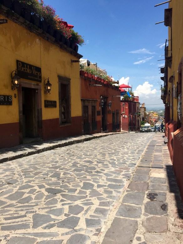 San Miguel de Allende The Potted Boxwood 63