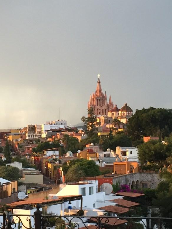 San Miguel de Allende The Potted Boxwood 7