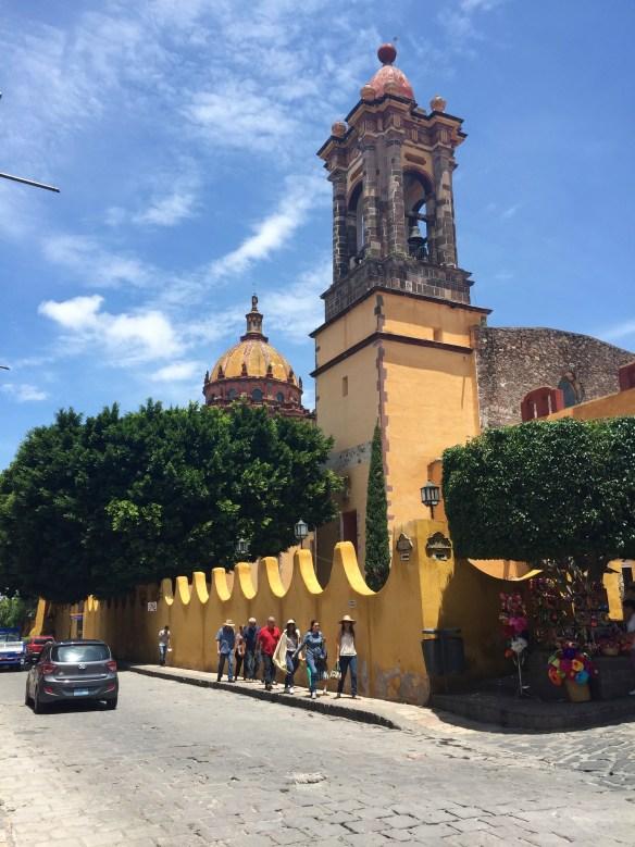 San Miguel de Allende The Potted Boxwood 71