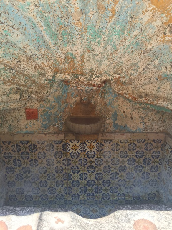 San Miguel de Allende The Potted Boxwood 72