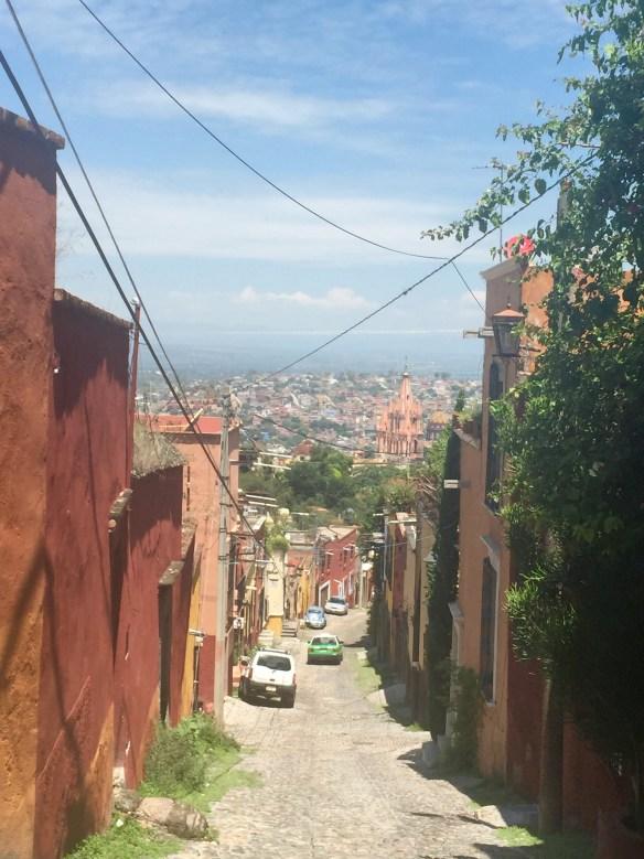 San Miguel de Allende The Potted Boxwood