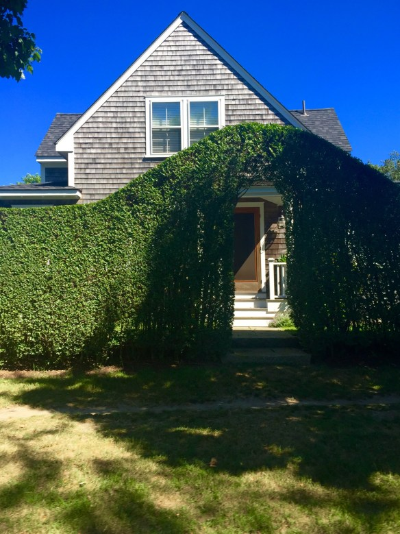 Nantucket Architecture _The Potted Boxwood 51