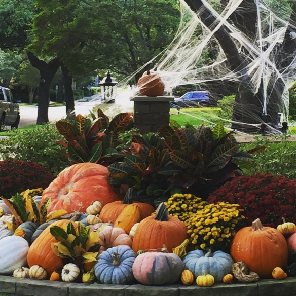 halloween-decoration-in-dallas-photo-by-the-potted-boxwood-3