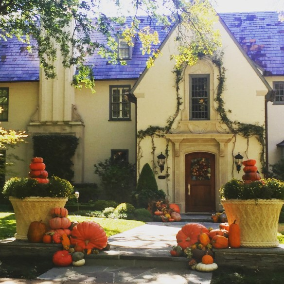 halloween-decoration-in-dallas-photo-by-the-potted-boxwood-5