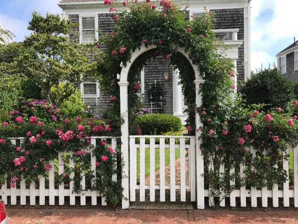 Nantucket home photo by christina dandar for The Potted Boxwood 2