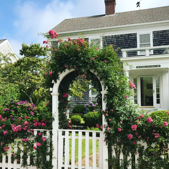 Nantucket home photo by christina dandar for The Potted Boxwood 31