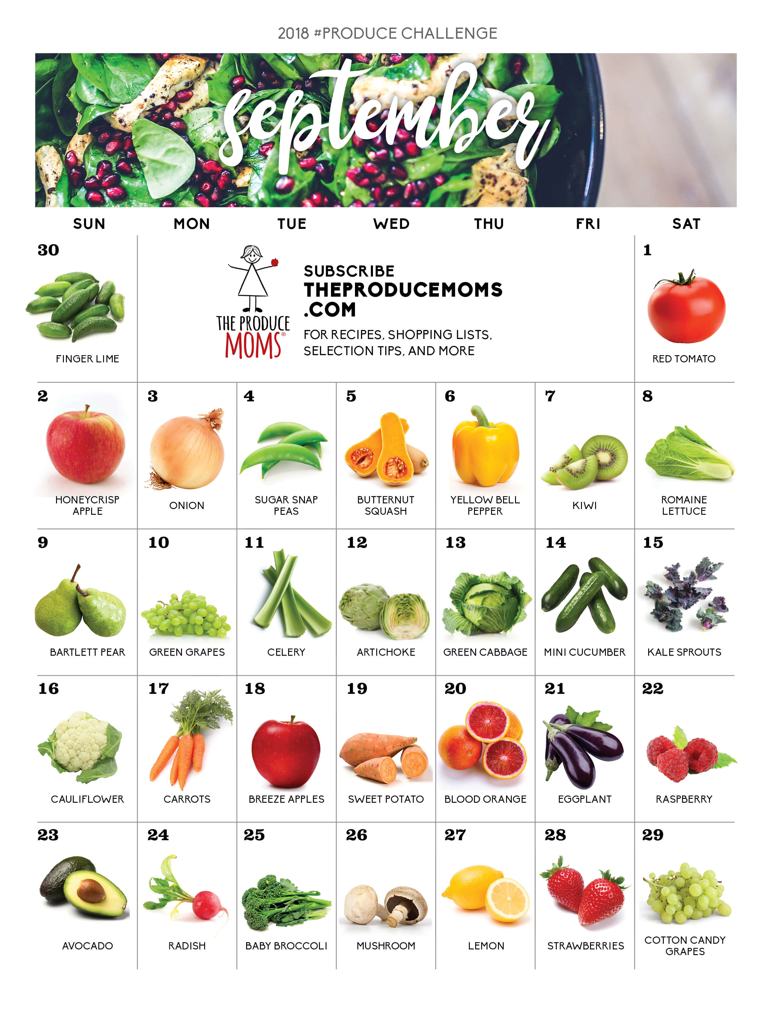 Howling Produce Challenge Can Dogs Eat Safe Dangerous Fruits Vegetables Can Dogs Eat Zucchini Pancakes Can Dogs Eat Vegetables Raw bark post Can Dogs Eat Zucchini