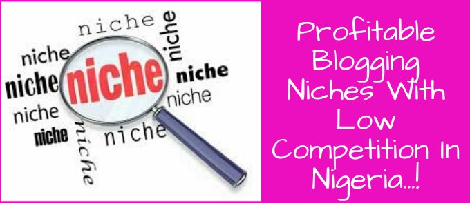 Top 3 Profitable Untapped Blogging Niches In Nigeria