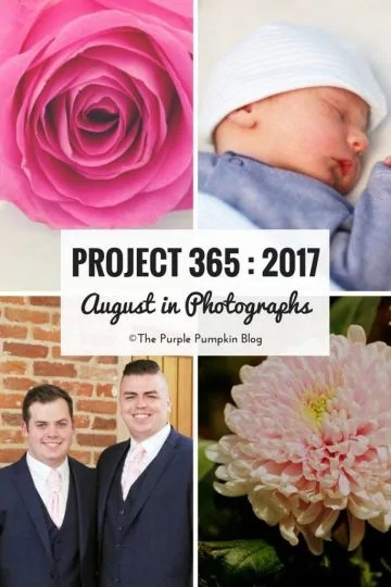 Project 365 : 2017 - August in Photographs
