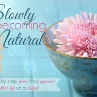 Slowly Becoming Natural: A Step by Step, Grace Filled Approach to a Healthier Life on a Budget