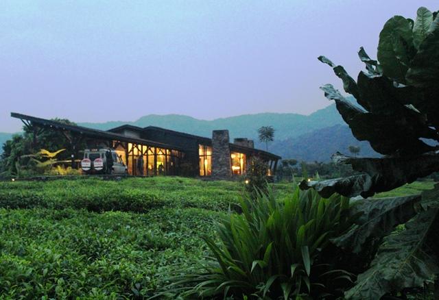 Nyungwe Forest Lodge Rwanda - zoedawes