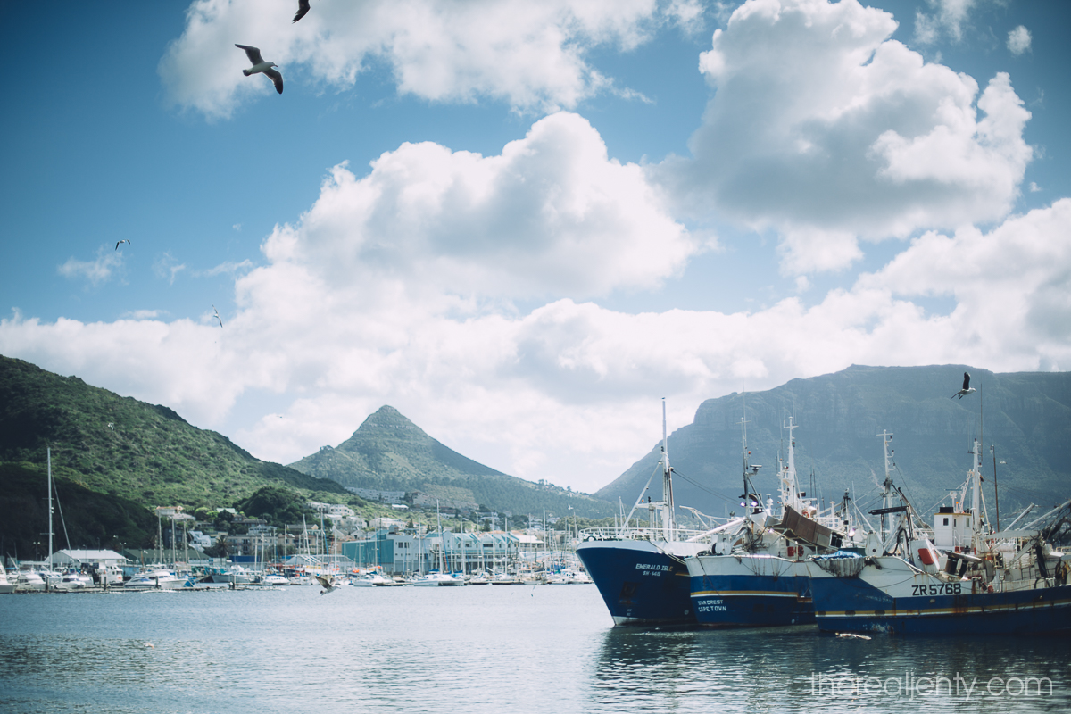 hout-bay-and-market-001