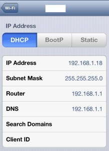 iPhone IP Address