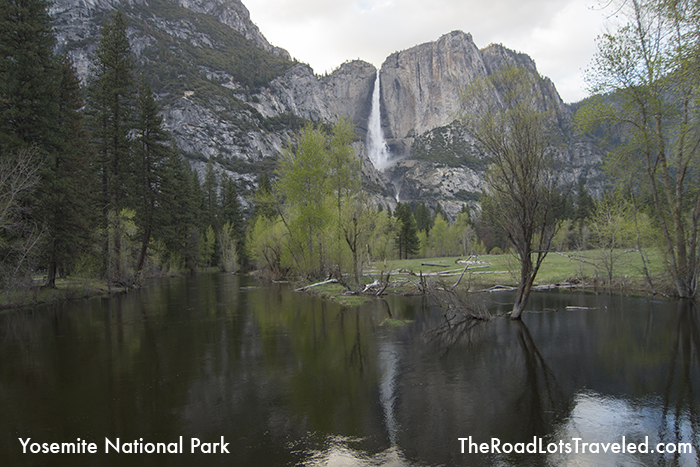 Upper Yosemite Falls is reflected in the Merced River on the Yosemite Valley floor.