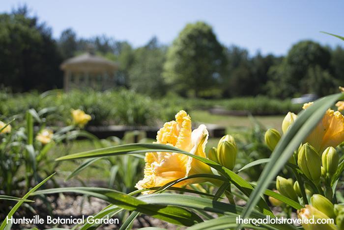 Daylily Garden at Huntsville Botanical Garden