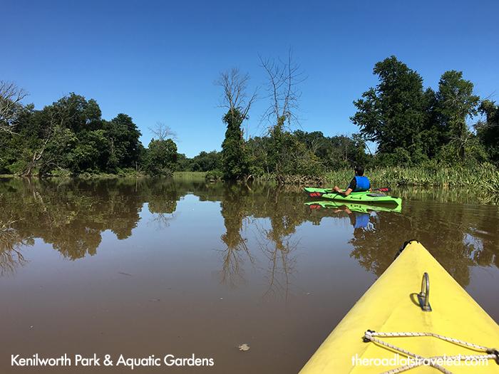 Kayaking through Kenilworth Park & Aquatic Gardens