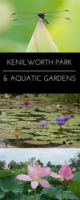 Kenilworth Park & Aquatic Gardens