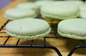 choc chip mint macarons