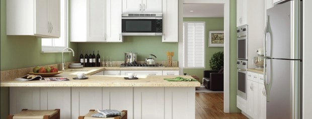 Aspen%2520White%2520Shaker%2520Kitchen