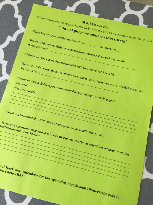 Mentoring program survey
