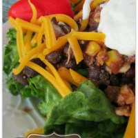 Salsa Chicken Slow Cooker Salad