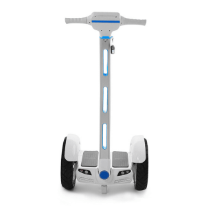 Mars Rover personal transporter