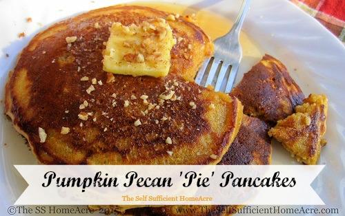 Pumpkin-Pecan 'Pie' Pancakes – The Self Sufficient HomeAcre