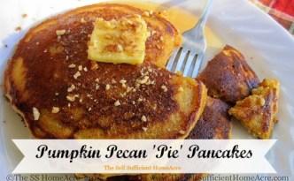 Pumpkin-Pecan Pie Pancakes - The Self Sufficient HomeAcre