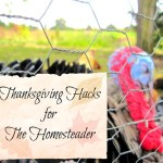 Thanksgiving Hacks for The Homesteader