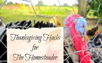 Thanksgiving Hacks for The Homesteader - The Self Sufficient HomeAcre