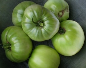 More fun with green tomatoes