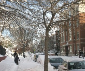 blizzard '10 more snow scenes 031