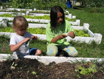 Imagine edible gardens at every city school