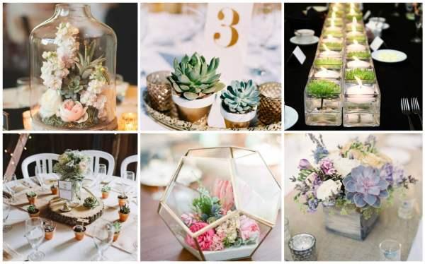 Amazing Succulent Centerpieces Collage