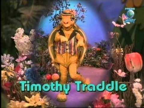 timoth traddle