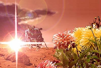 Mars flower illustration