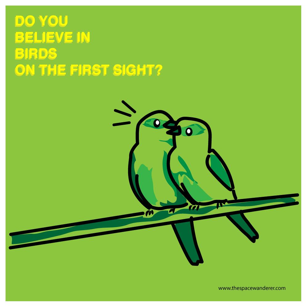 Do you believe in birds?