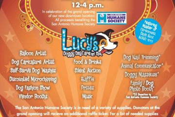 Canine Carnival Flyer dl