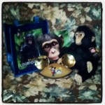 Disneynature's Chimpanzee Plush Oscar & Book Giveaway