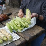 Re-wrapping the Corn in the Husks