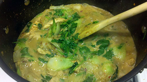Christie and Viet's Tom Kha Gai