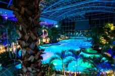 The Plam_11_Therme (2)