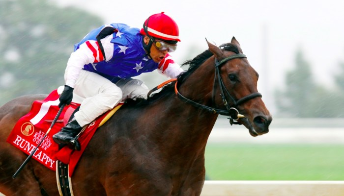 """Wohlers: Runhappy is """"Better Than He Was a Year Ago"""""""