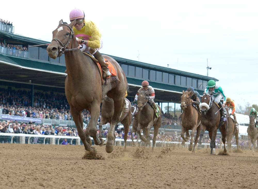 An Early Look at the Breeders' Cup Filly & Mare Sprint