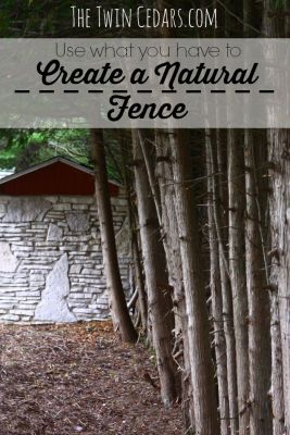 How to Create a Natural Fence Line